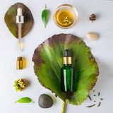 Cosmético orgánico del balneario con los ingredientes herbarios Suero vegetal para la piel con los extractos herbarios botella de Imagen de archivo libre de regalías