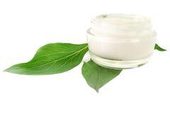 Cosmético poner crema del cuidado de piel bio Imágenes de archivo libres de regalías