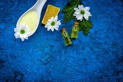 Cosméticos dos termas da camomila com os ingredientes ervais naturais Sal dos termas da camomila, sabão, óleo na cópia azul da op foto de stock royalty free