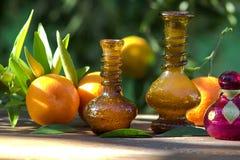 Cosméticos e óleo naturais do citrino Fotografia de Stock