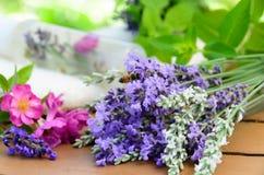 Cosméticos naturais com ervas fotografia de stock