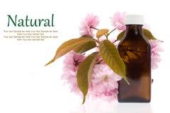 Cosméticos naturales - aceite, herbario Foto de archivo