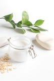 Cosméticos orgánicos naturales con las hierbas para el bebé en el fondo blanco fotos de archivo libres de regalías