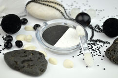 Cosméticos preto e branco Imagem de Stock