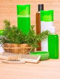 Cosméticos y accesorios naturales del cuidado del cabello Imagen de archivo libre de regalías