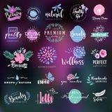 Cosméticos y etiquetas de la belleza y colección de las insignias