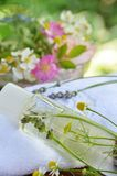 cosmétiques de fines herbes Images libres de droits