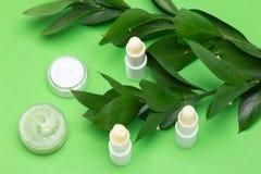 Cosmétiques naturels pour des soins de la peau de lèvre - baumes à lèvres, crème, Sc de miel images libres de droits