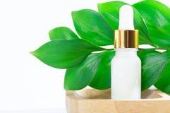 Cosmétiques naturels : sérum avec le compte-gouttes et les feuilles vertes sur le fond blanc photo libre de droits