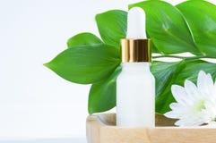Cosmétiques naturels : sérum avec le compte-gouttes, la fleur blanche et les feuilles vertes sur le fond blanc image stock