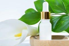 Cosmétiques naturels : sérum avec le compte-gouttes, la fleur de zantedeschia et les feuilles vertes sur le fond blanc image libre de droits