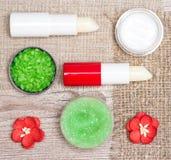 Cosmétiques pour des soins de la peau de lèvre photos libres de droits