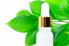 Cosm?tiques naturels : s?rum avec le compte-gouttes et les feuilles vertes sur le fond blanc photo stock