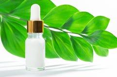Cosm?tiques naturels : s?rum avec le compte-gouttes et les feuilles vertes sur le fond blanc image libre de droits