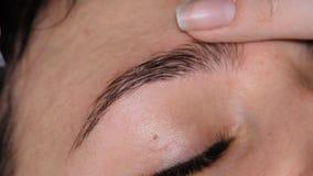 Cosmetólogo Eyebrow Care almacen de metraje de vídeo