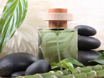 Cosmetic. Bamboo,green water and stones Stock Photos
