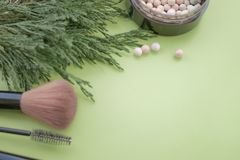 Cosmetic accessories. Brush, blush, lipstick, green branches on a green background royalty free stock images