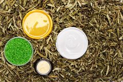 Cosmetic body care products in dry leaves Stock Images