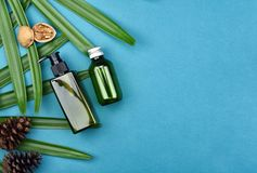 Cosmetic bottle containers on green herbal leaves background, Blank label for branding mock-up. Cosmetic bottle containers on green herbal leaves background stock image