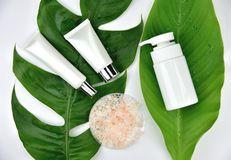 Cosmetic bottle containers with green herbal leaves, Blank label for branding mock-up. Natural beauty product concept royalty free stock photo