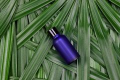 Cosmetic bottle containers with green herbal leaves, Blank label package for branding mock-up. Cosmetic bottle containers with green herbal leaves, Blank label royalty free stock photography