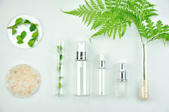 Cosmetic bottle containers with green herbal leaves, Blank label package for branding mock-up Royalty Free Stock Photos