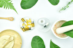 Cosmetic bottle containers with green herbal leaves, Blank label package for branding mock-up Stock Photography