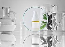 Cosmetic bottle containers with green herbal leaves and scientific glassware, Focus on blank label package for branding mock-up. Royalty Free Stock Photos