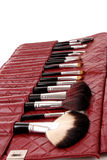 Cosmetic brushes in cosmetics bag Stock Photos