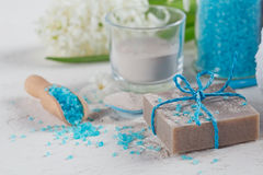 Cosmetic clay powder, homemade clay soap and blue sea salt on wh Royalty Free Stock Photo