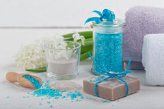 Cosmetic clay powder, homemade clay soap and blue sea salt on wh Royalty Free Stock Photos