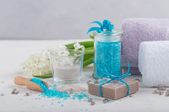 Cosmetic clay powder, homemade clay soap and blue sea salt on wh Stock Images