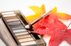 Cosmetic compact with fall leaves Stock Photos