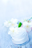 Cosmetic cream Royalty Free Stock Photography