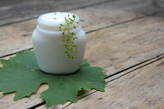 Cosmetic cream with grape leaf royalty free stock photo
