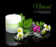 Cosmetic cream with herbs. On black background Royalty Free Stock Image
