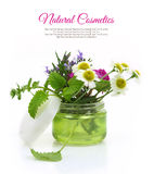 Cosmetic cream jar with herbs Stock Photos
