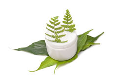 Cosmetic cream with leaf Stock Photos