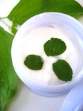 Cosmetic cream with leaves Royalty Free Stock Images
