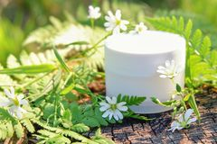 Cosmetic cream for skin care. Natural cosmetics in nature outdoors with green fern leaves and wild flowers.  stock photos