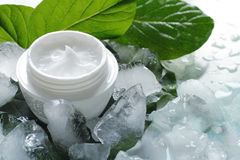 Cosmetic creams. A jar of a cosmetic cream with fresh green leaves and pieces of ice. Beauty concept royalty free stock photography