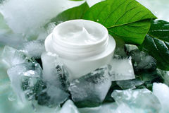 Cosmetic creams. A jar of a cosmetic cream with fresh green leaves and pieces of ice. Beauty concept royalty free stock photo