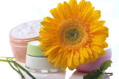 Cosmetic creams Stock Photography