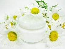 Cosmetic creme for face among daisy flowers Royalty Free Stock Image