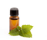 Cosmetic essential oil of lemon balm Royalty Free Stock Images