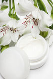 Cosmetic moisturizing cream Stock Images