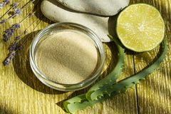 Free Cosmetic Mud Mask 1 Stock Images - 131910354