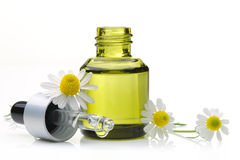 Cosmetic oil with daisy flower Stock Images