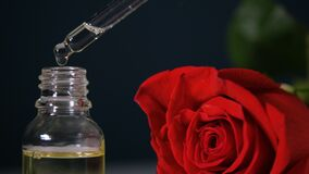 Cosmetic oil for face and body, bottle with oil. Rose in the background. Natural Skin Oil
