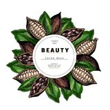 Cosmetic packaging template. Cocoa beans oil beauty product. Vector hand drawn illustration. Organic vegetarian food. Ingredient. Good for label, beauty shop vector illustration